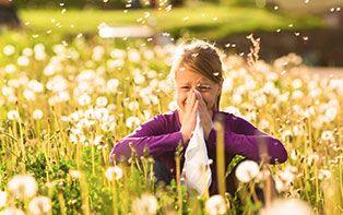Le printemps est de retour et avec lui les pollens! Armez-vous contre le rhume des foins!