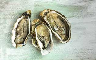 Les huîtres et Q10 pour plus d'énergie pour le corps et l'esprit!