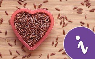 Le cholestérol : composant essentiel avec une mauvaise réputation
